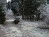 eschenlainetal-02-2012-11-18-008