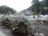 eschenlainetal-02-2012-11-18-009